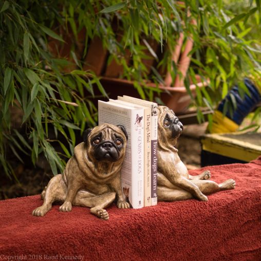 fawn pug bookends (10 of 13)