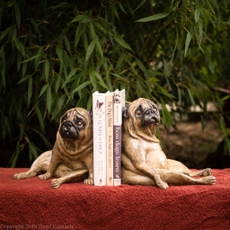 fawn pug bookends (8 of 13)