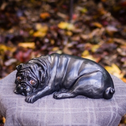 napping pug statue in fawn and black (1 of 16)