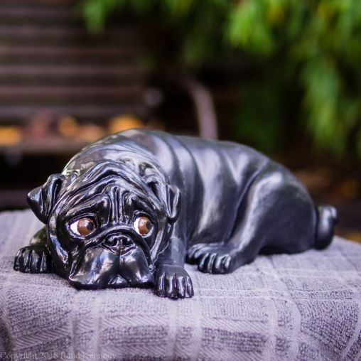 napping pug statue in fawn and black (6 of 16)