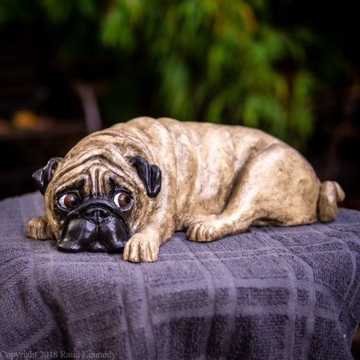 napping pug statue in fawn and black (7 of 16)